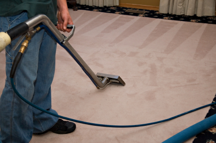carpet cleaning Leo