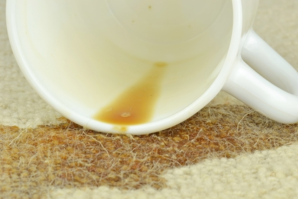Carpet Stain Removal Professionals