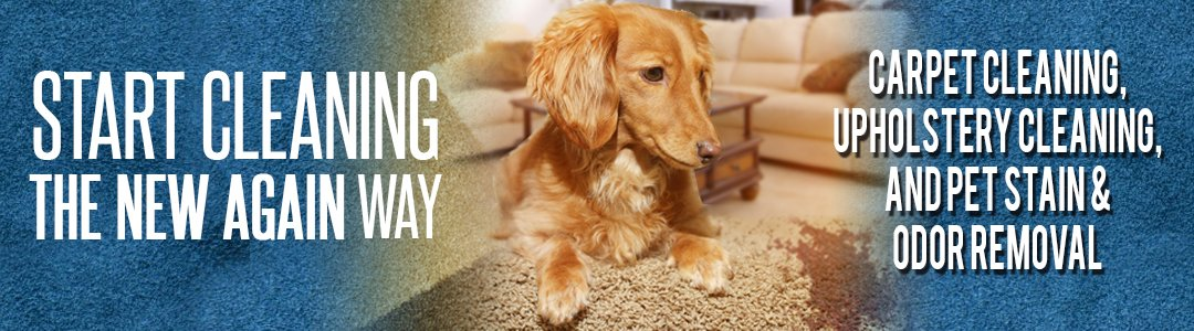 Carpet Cleaning Fort Wayne Carpet Cleaners New Again Carpet Cleaning